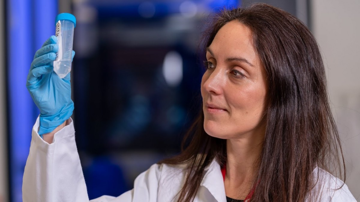 $8 million to help immune system hunt down and beat cancer